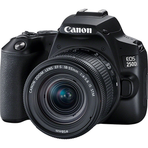 Camera foto DSLR CANON EOS 250D, 24.1MP, Wi-Fi, negru + Obiectiv EF-S 18-55 IS