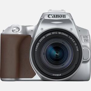 Camera foto DSLR CANON EOS 250D, 24.1MP, Wi-Fi, silver + Obiectiv EF-S 18-55 IS