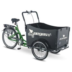 Bicicleta Cargo PEGAS Cargo Adult 20x20, Verde-Smarald