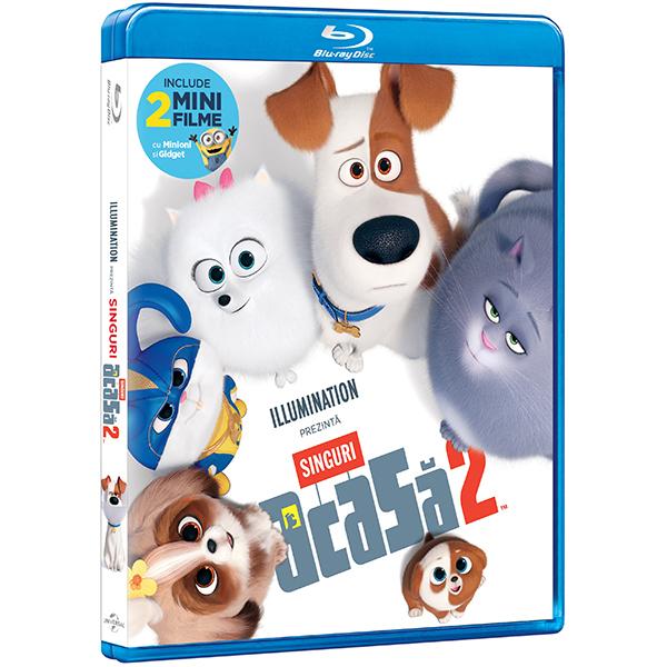 Singuri acasa 2 Blu-ray