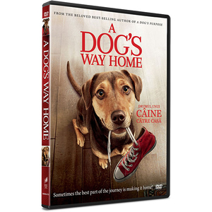Drumul Unui caine catre casa DVD