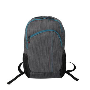 "Rucsac laptop PROMATE Ascend1-BP, 15.6"", gri"