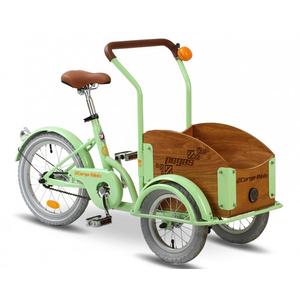 Bicicleta pentru copii PEGAS Mini Cargo 1S, Verde Fistic