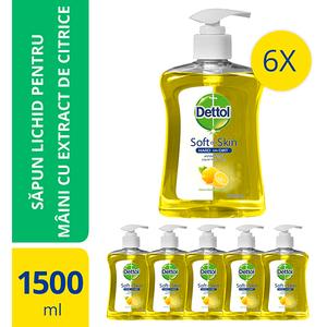Sapun lichid DETTOL Citrus, 6 x 250ml