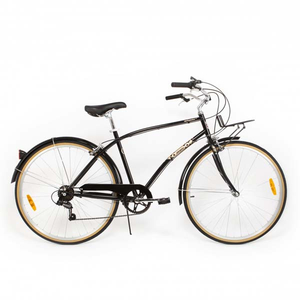 Bicicleta de oras PEGAS Popular Otel 19 7S, Gri Spatial