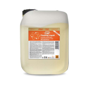 Solutie curatare filtru particule PROTEC 5L