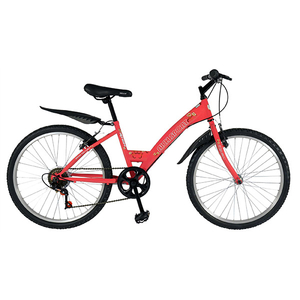 "Bicicleta de Trekking RICH SPORT R2430A, 24"", cadru otel, roz HK"