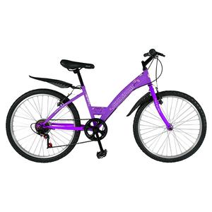 "Bicicleta de trekking RICH SPORT R2430A, 24"", mov"