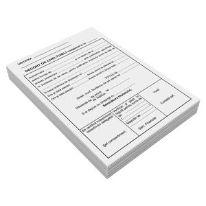 Decont cheltuieli deplasare VOLUM, A5, 50 file x 3 carnete