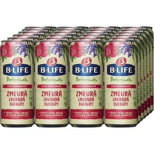 Bautura racoritoare fara alcool B-LIFE Zmeura bax 0.33L x 24 cutii