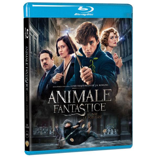 Animale fantastice si unde le poti gasi Blu-ray